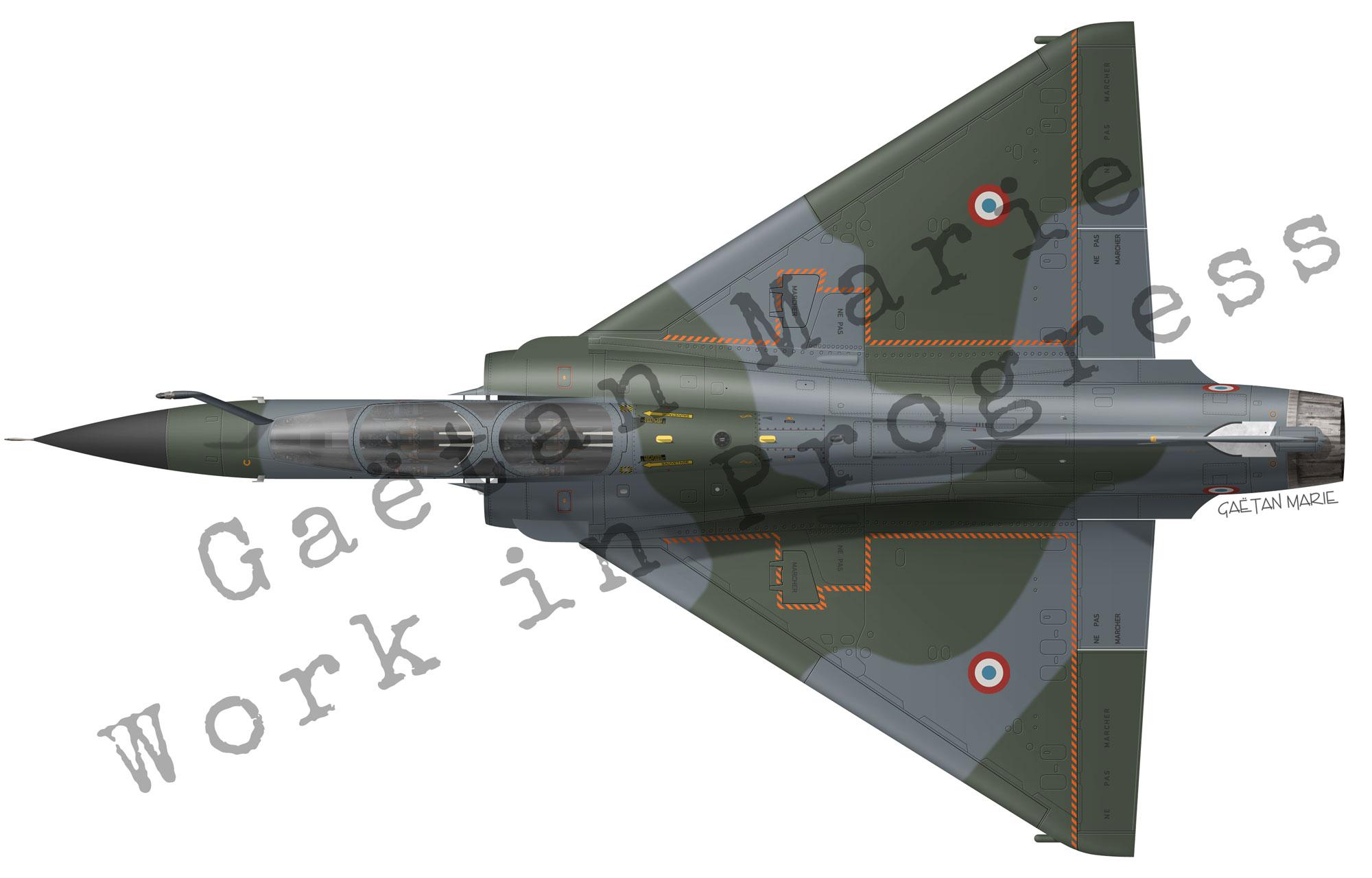 AAA-Mirage-2000N-top-model
