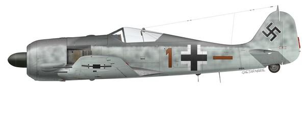 Germany, Fw 190A-6, Hpt Johannes Naumann, 6.~JG 26, Lille-Vendeville, July 1943