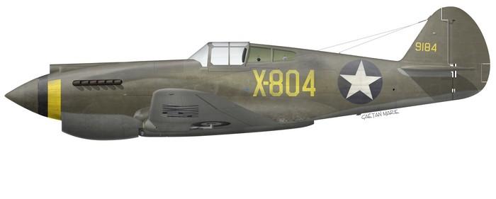US, P-40-CU, 39-184, X-804, Luke Field