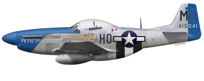 US, P-51D-15-NA, 44-15041, Petie 3rd, John C. Meyer, 487 FS, 352 FG