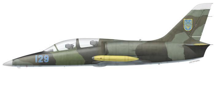 Ukraine, L-39C, Vasilkov AB, 2008