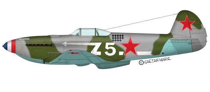 yak3-001