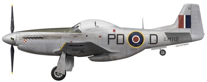 North American P 51 Mustang – Gaëtan Marie's Aviation Profiles