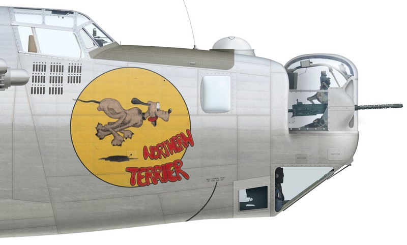 "Nose art of B-24J-200-CO ""Northern Terrier"" (s/n 44-41196), A72-54 of No 24 Squadron RAAF, Fenton, spring 1945."