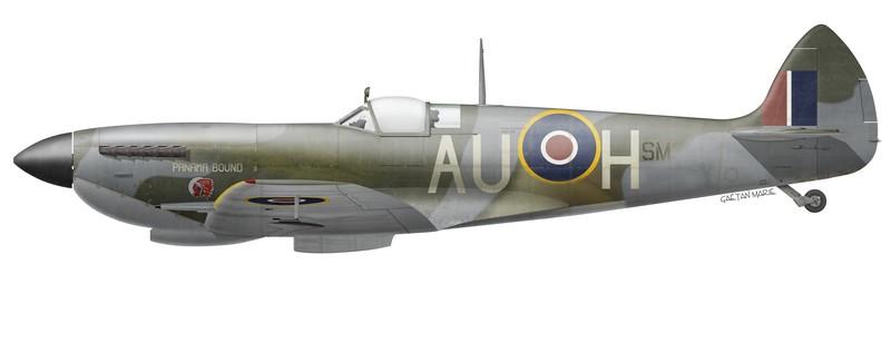 RCAF, Spitfire Mk XVIe SM309 'Panama Bound' piloté par le S/L Richard 'Hap' Beall, No 421 Squadron