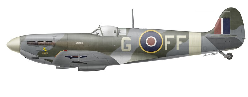 "Spitfire Mk Vb AA850 ""Heather"" of No 132 (City of Bombay) Squadron, RAF Newchurch, September 1943."