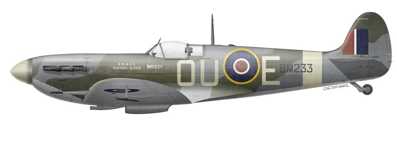Spitfire Mk Vb, BM233, flown by F/O David J. V. Henry, of No 485 (NZ) Squadron, 1942.
